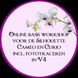 Online basis workshop V4