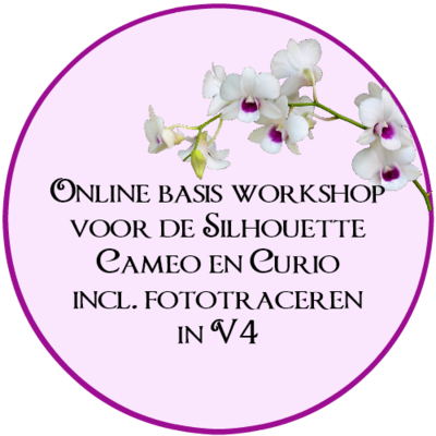 Online basis workshop V4