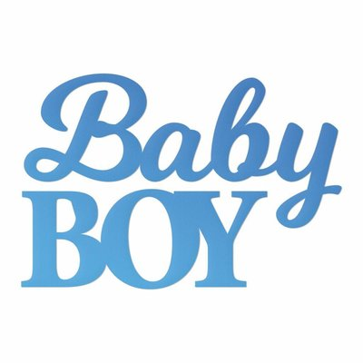 CC Baby Boy Sentiment Mini Die