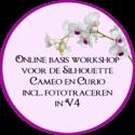 Online-basis-workshop-V4