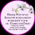 Online-Workshop-pop-up-kaarten-en-shadow-boxkaarten-ontwerpen