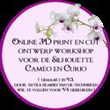 Online-workshop-3D-print-en-cut-ontwerpen-maken